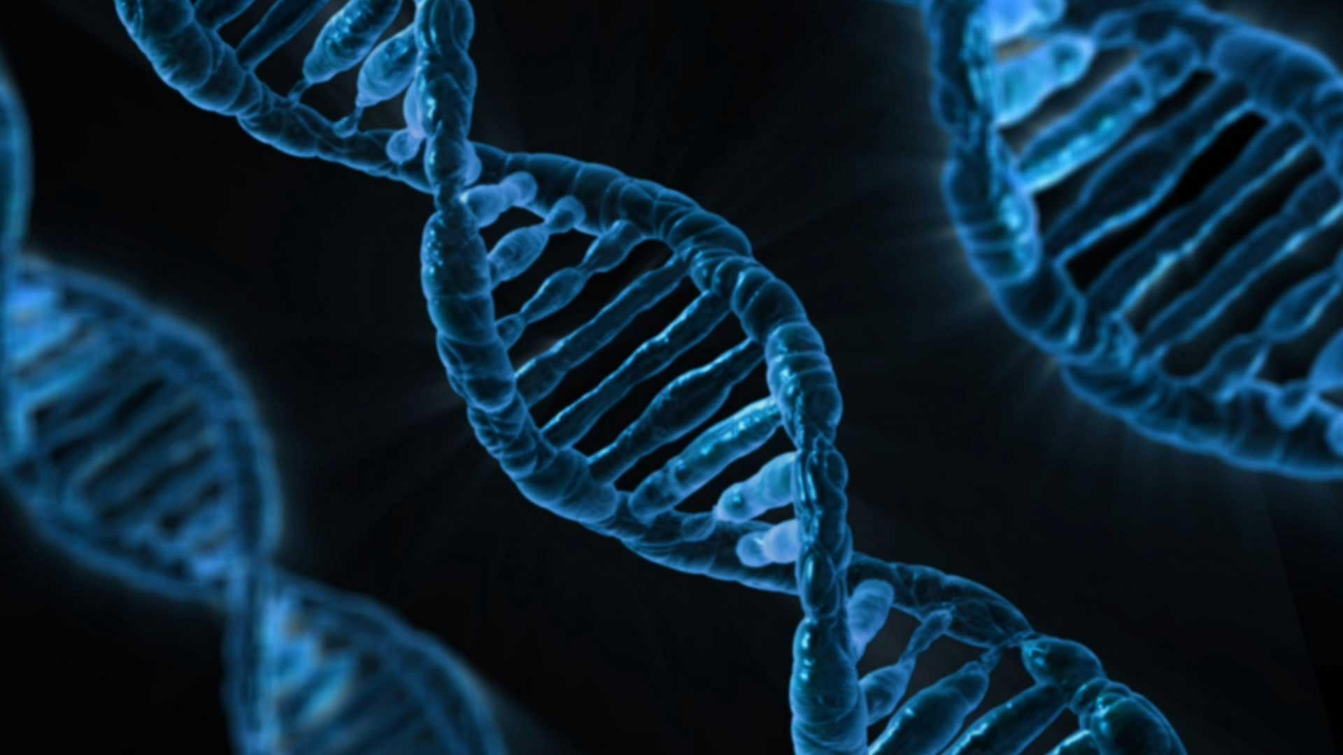 Epigenetik und Sport