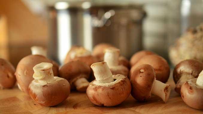 Pilze sind eine gute Quelle von Vitamin D