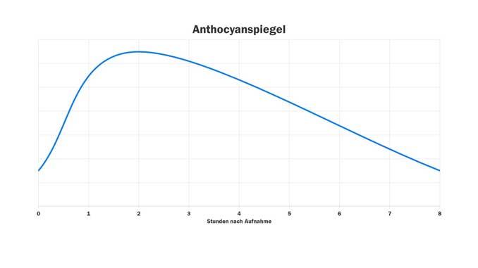Verlauf der Anthocyanspiegel nach Aufnahme