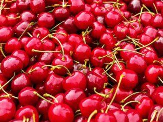Kirschen und Kirschsaft unterstützen die Regeneration