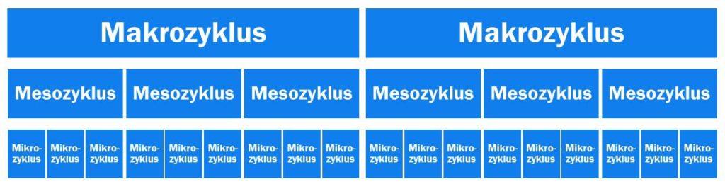 Makro-, Meso- und Mikrozyklen