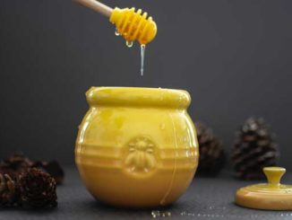 Honig fördert die Wundheilung