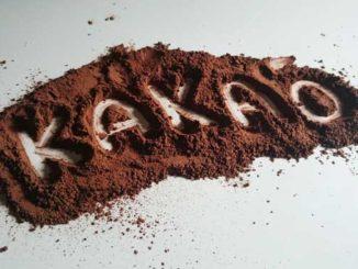 Wie gesund sind Kakao und Schokolade?